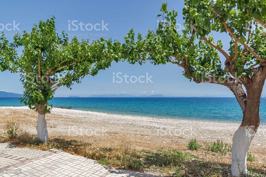Beach and trees on the beach of Poros, Kefalonia, Greece stock photo
