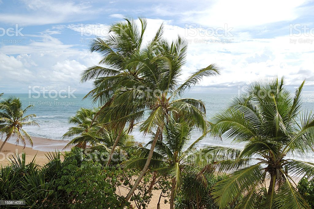 Beach and turquoise water of Indian Ocean, Bentota, Sri Lanka royalty-free stock photo