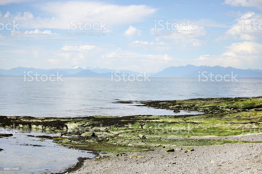 Beach at Galiano Island stock photo