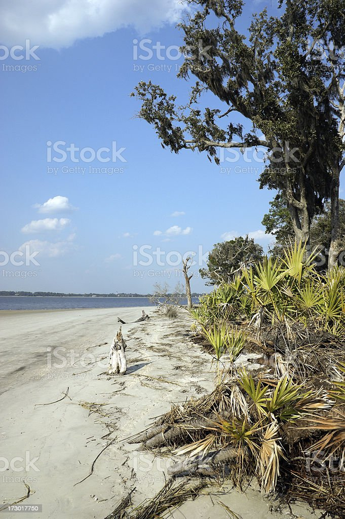 Beach at Jekyll Island Georgia stock photo
