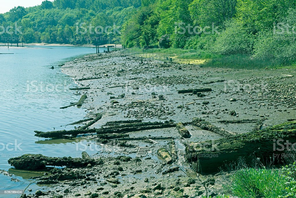 Beach at low tide in estuary being restored stock photo