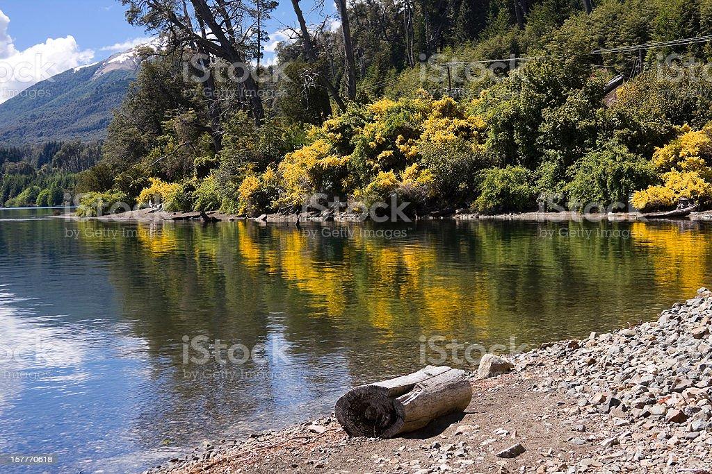 Beach at Nahuel Huapi Lake stock photo