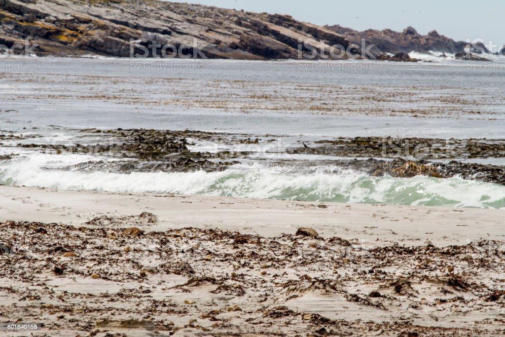 Beach at Port Stanley - Falkland Islands stock photo