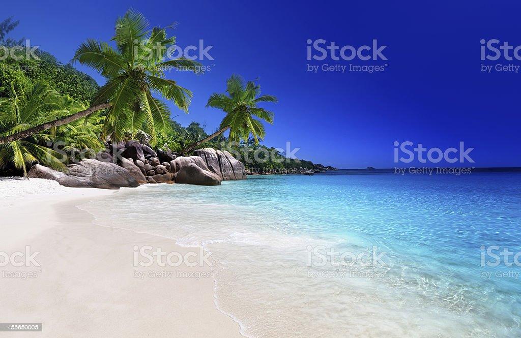beach at Praslin island, Seychelles stock photo