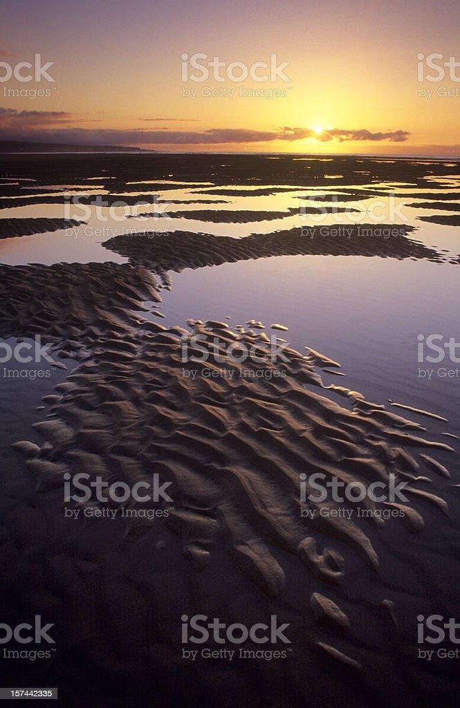 Beach at sunrise royalty-free stock photo