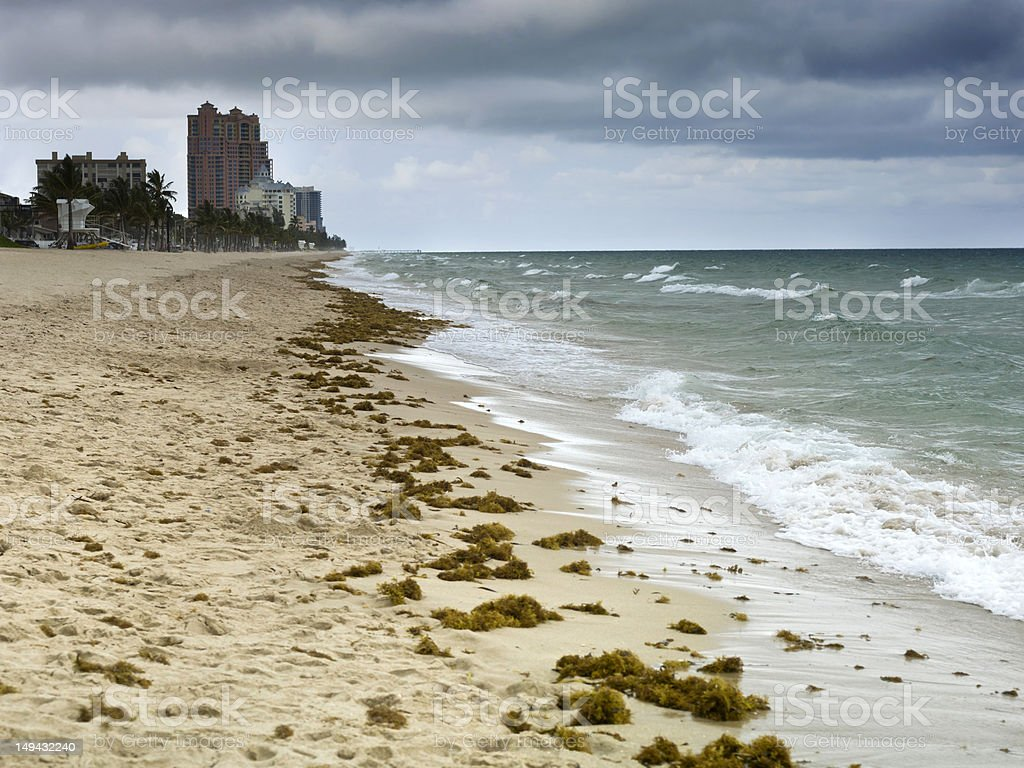 Beach before the Storm royalty-free stock photo
