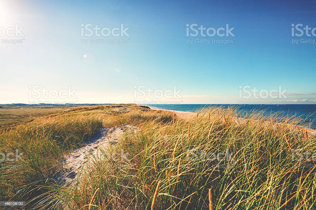 Beach by the North Sea stock photo