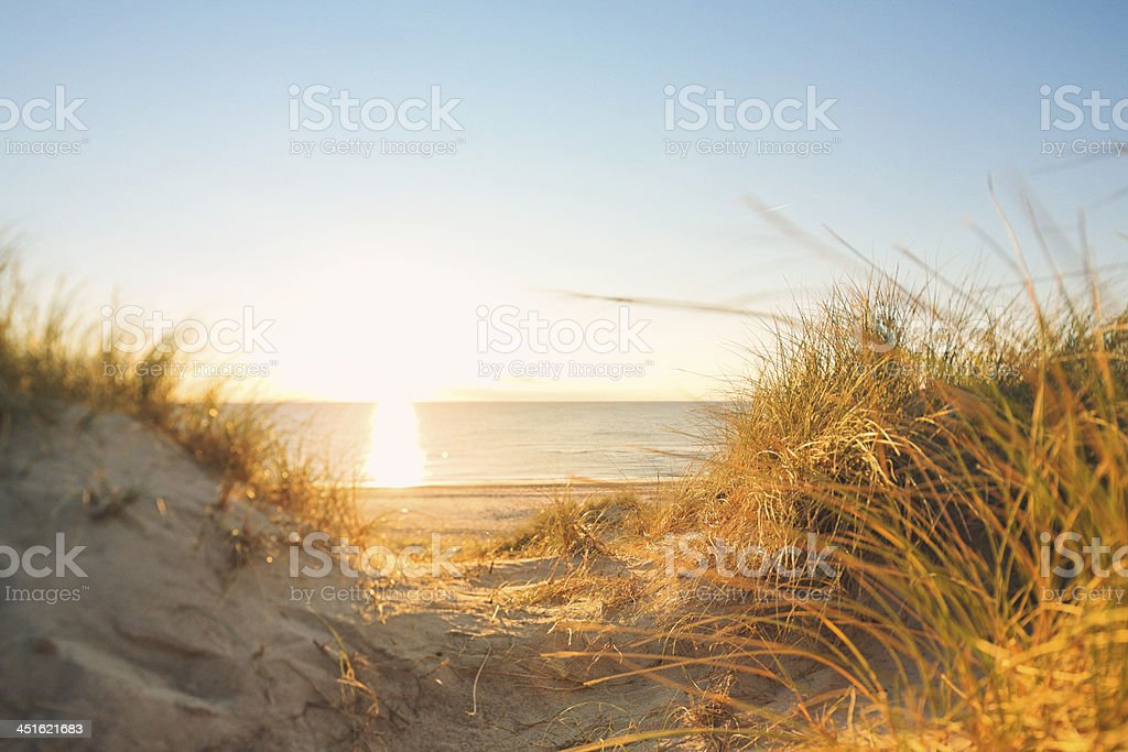 Beach by the Northsea stock photo