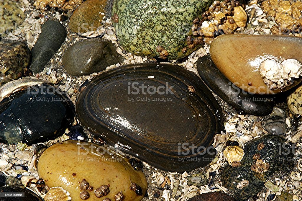 beach color rocks close up royalty-free stock photo