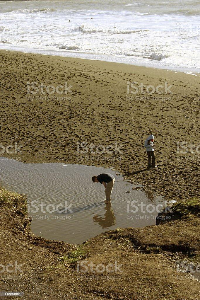 Ceux qui aiment écumer les plages photo libre de droits