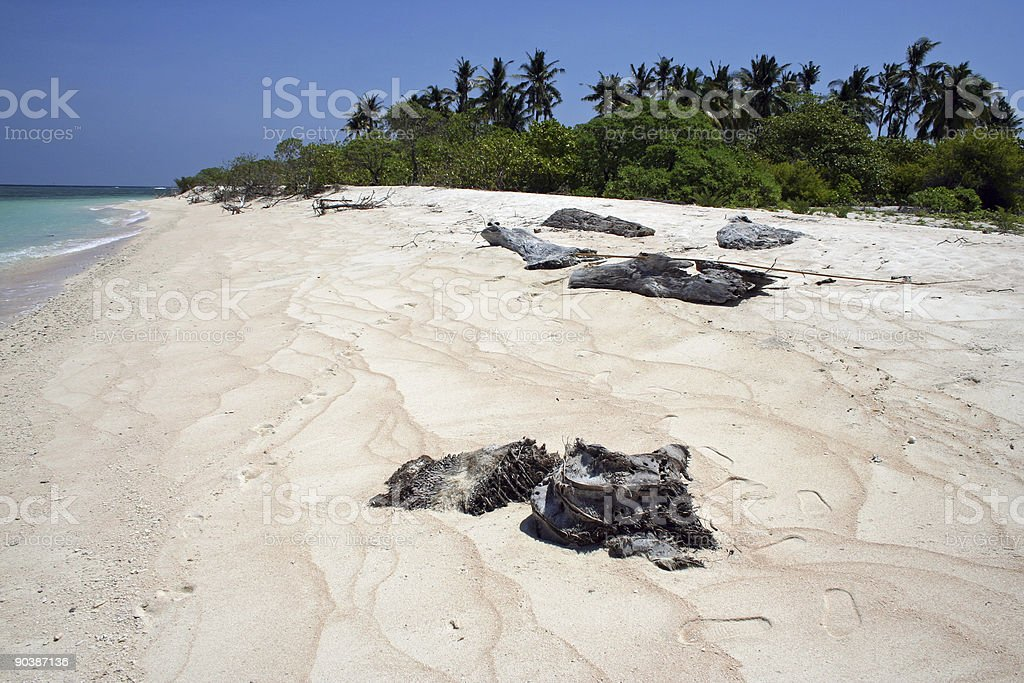 beach combing tropical island philippines royalty-free stock photo