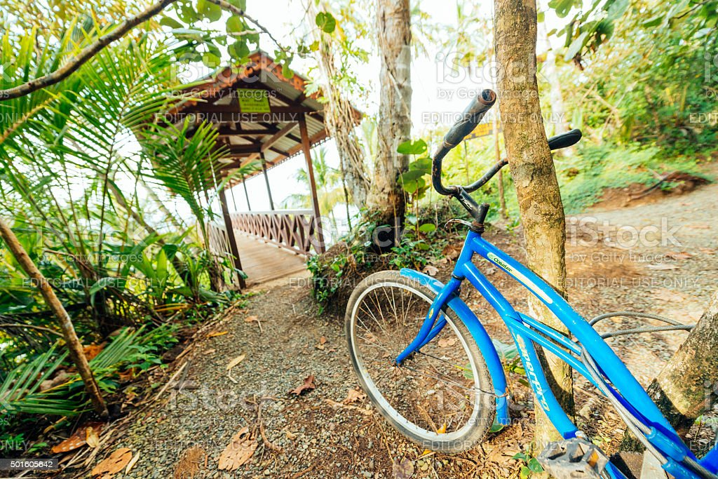 Beach Cruiser Bike Parked in Tropical Manzanillo Costa Rica Rainforest stock photo