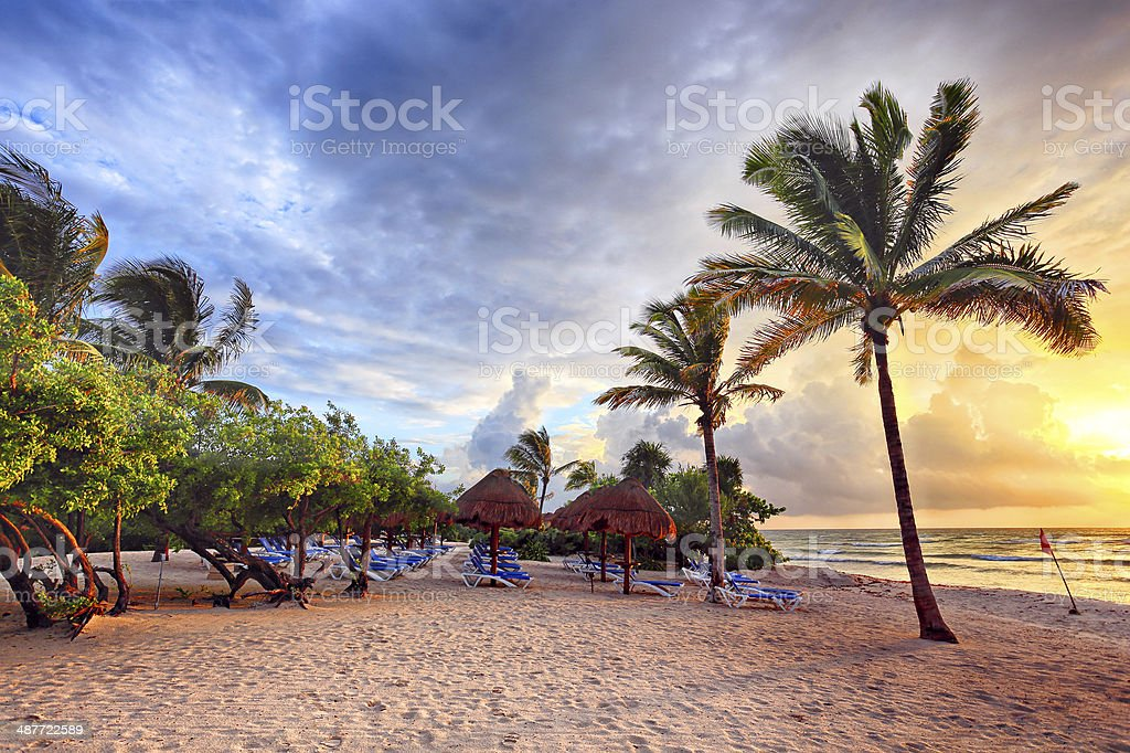 Beach Dawn stock photo