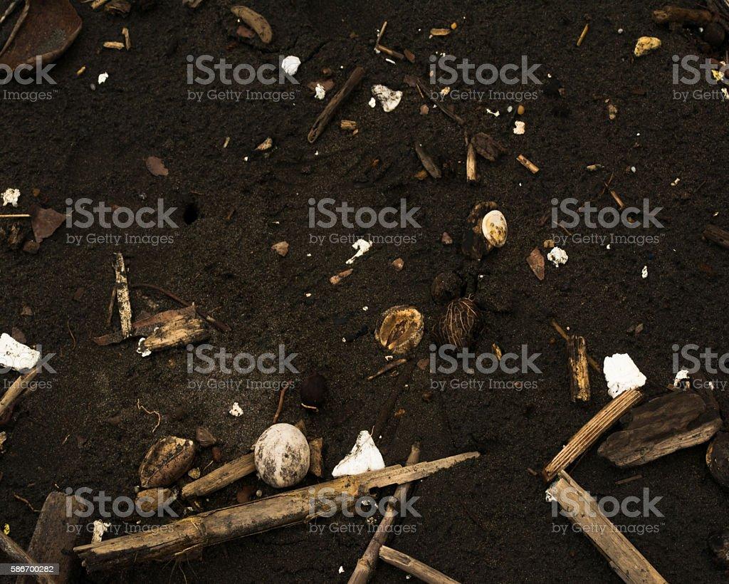 Beach Debris stock photo