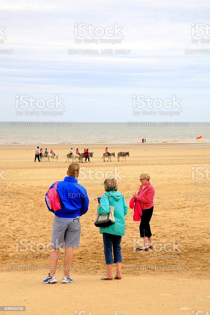 Beach Donkey Rides. stock photo