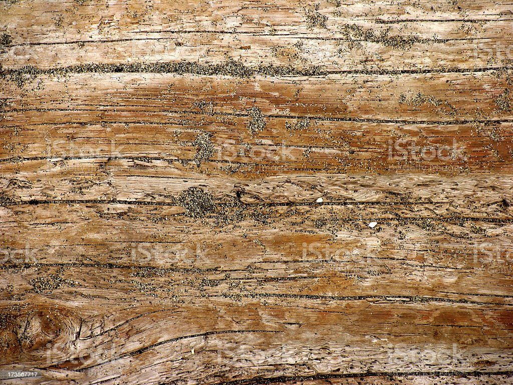 Beach Driftwood Texture royalty-free stock photo
