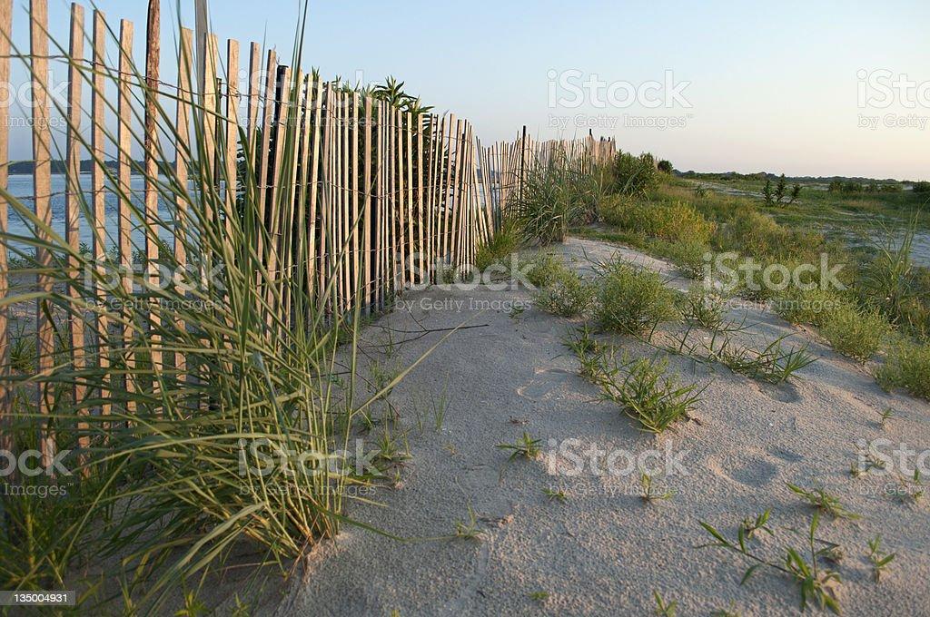 Beach dunes at dusk stock photo