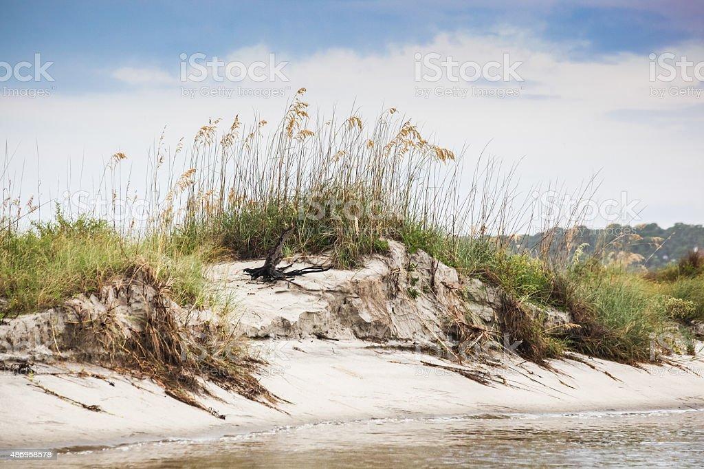 Beach Dunes stock photo