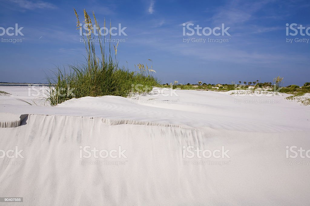 Beach Dunes stock photo
