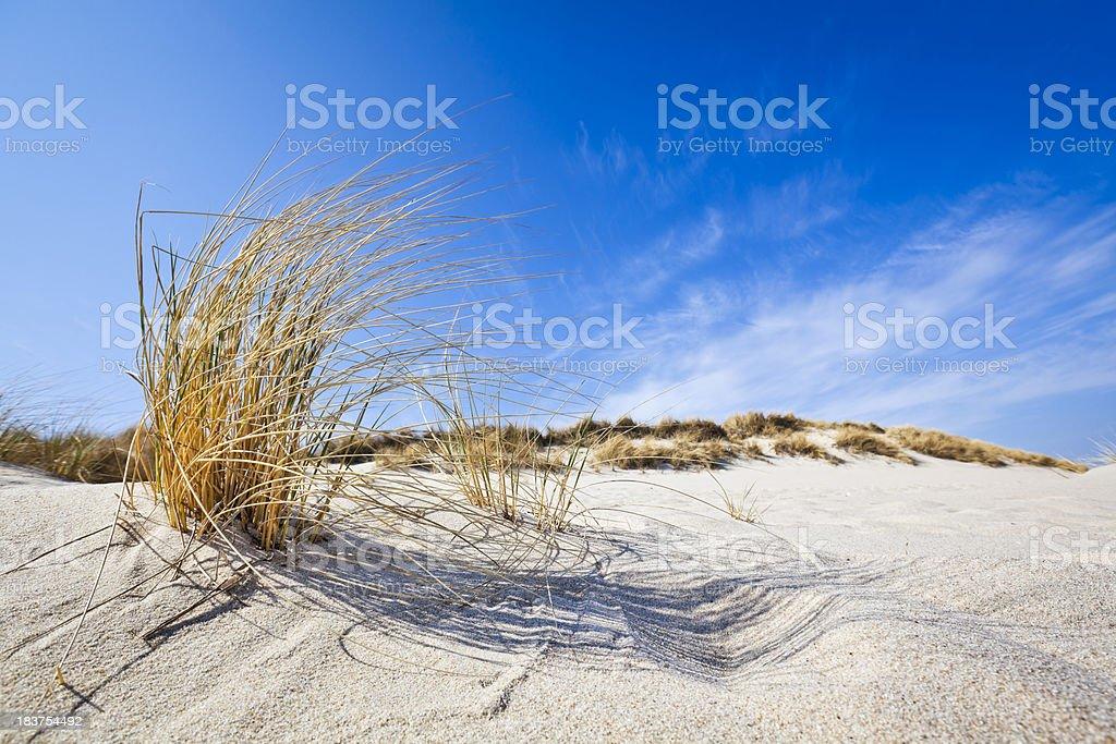 Beach Feelings - Ellenbogen ( Sylt ) royalty-free stock photo