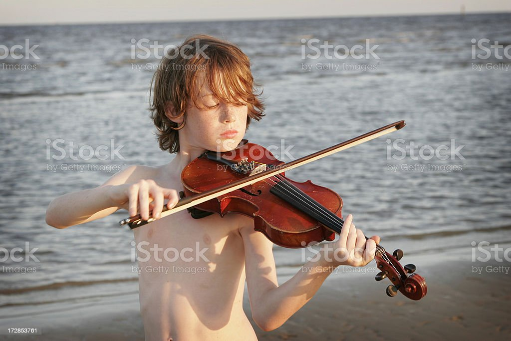Beach Fiddler royalty-free stock photo