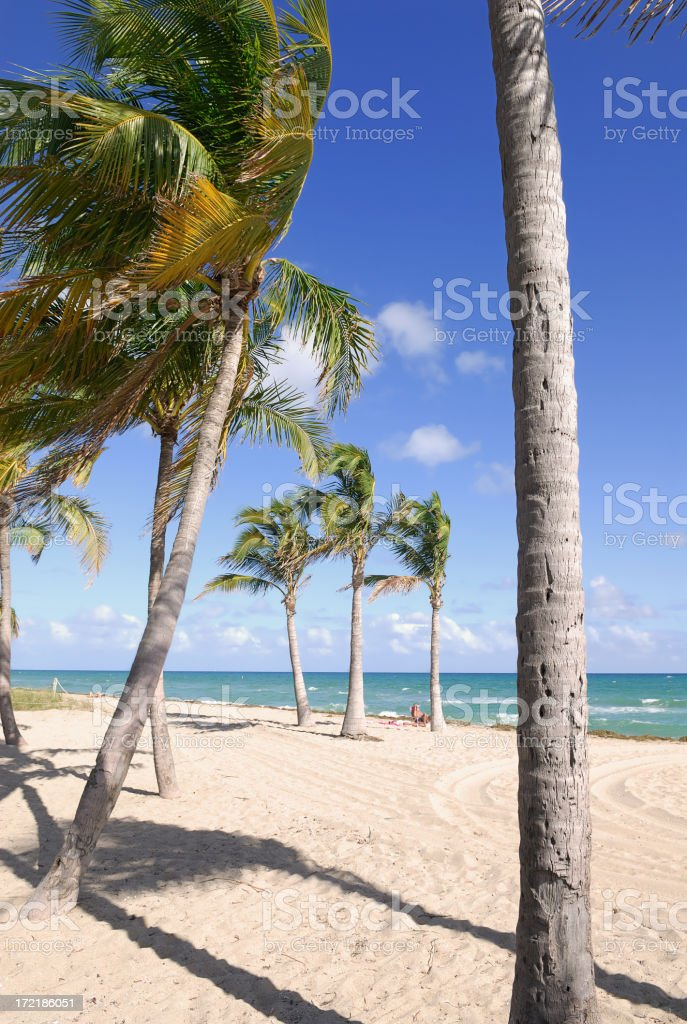 beach fort lauderdale royalty-free stock photo
