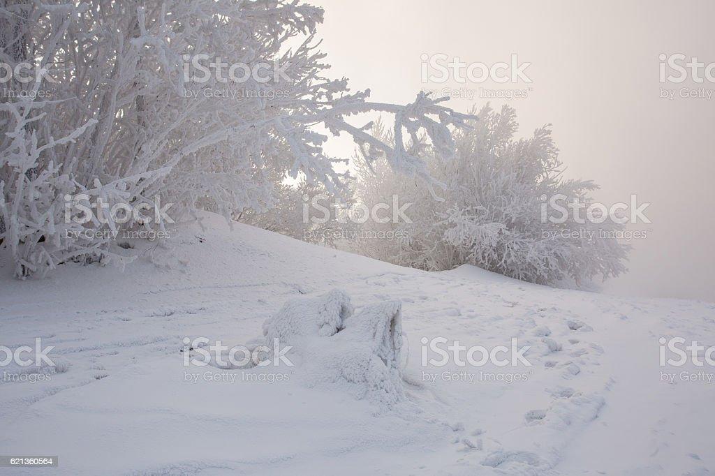 Beach frozen stream. Winter landscape royalty-free stock photo