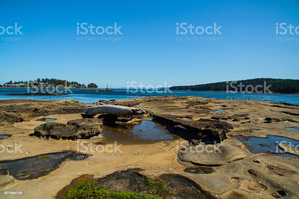 Beach - Gabriola Island stock photo
