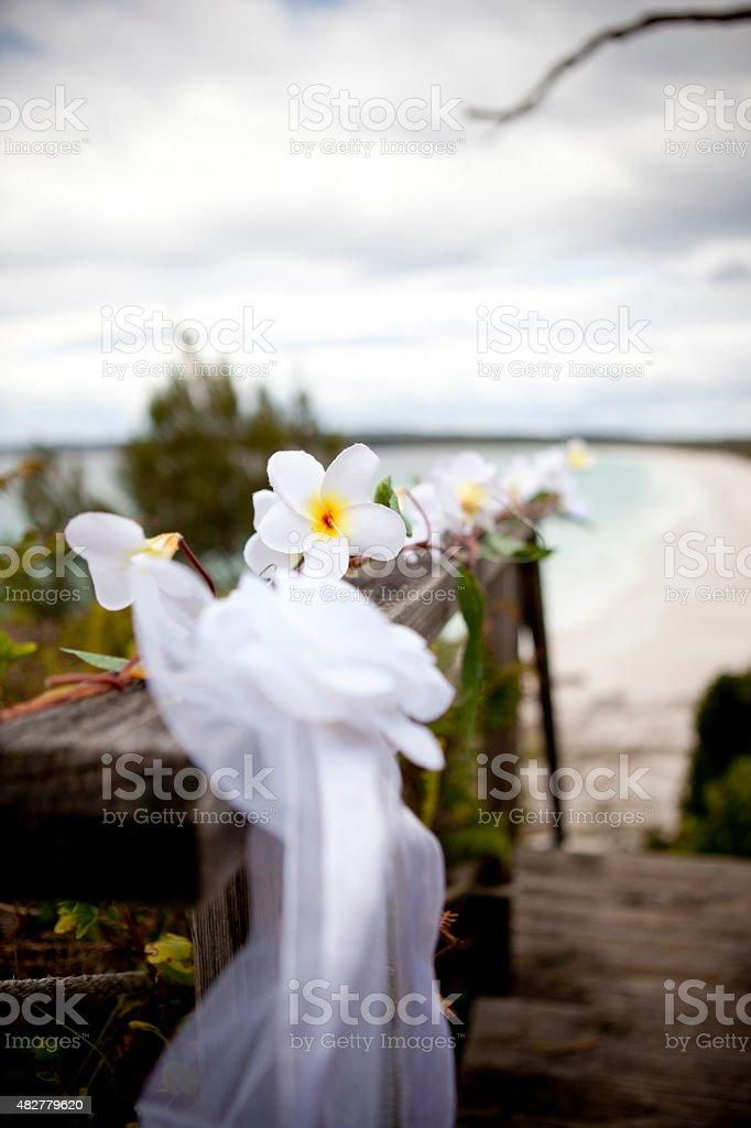Beach House Frangipanis stock photo
