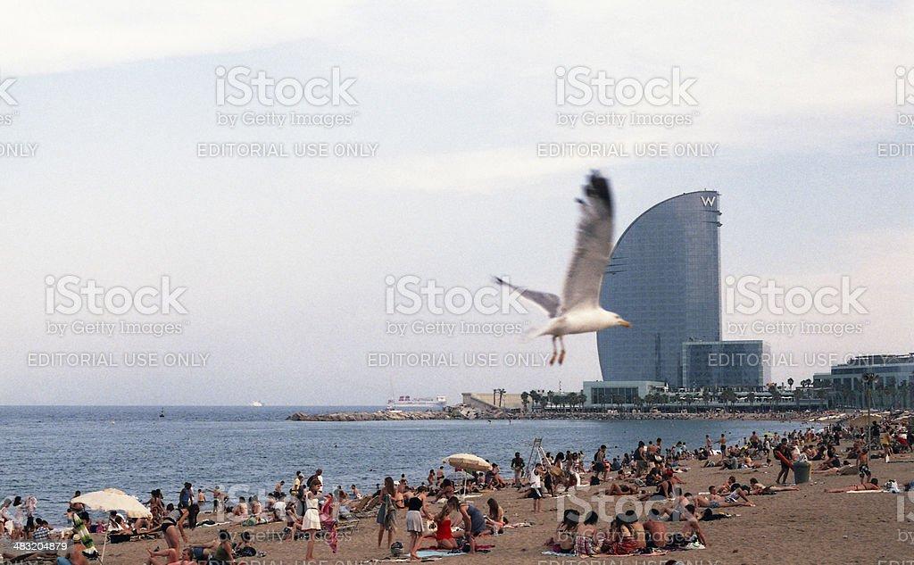 Beach in barcelona stock photo