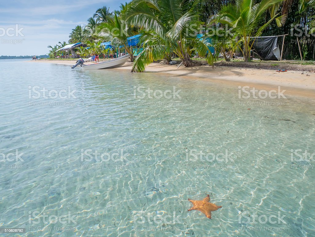 Beach in bocas del toro royalty-free stock photo