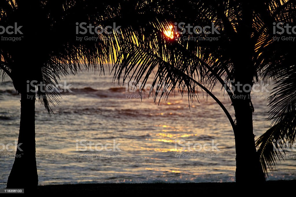 Beach in Costa-Rica royalty-free stock photo