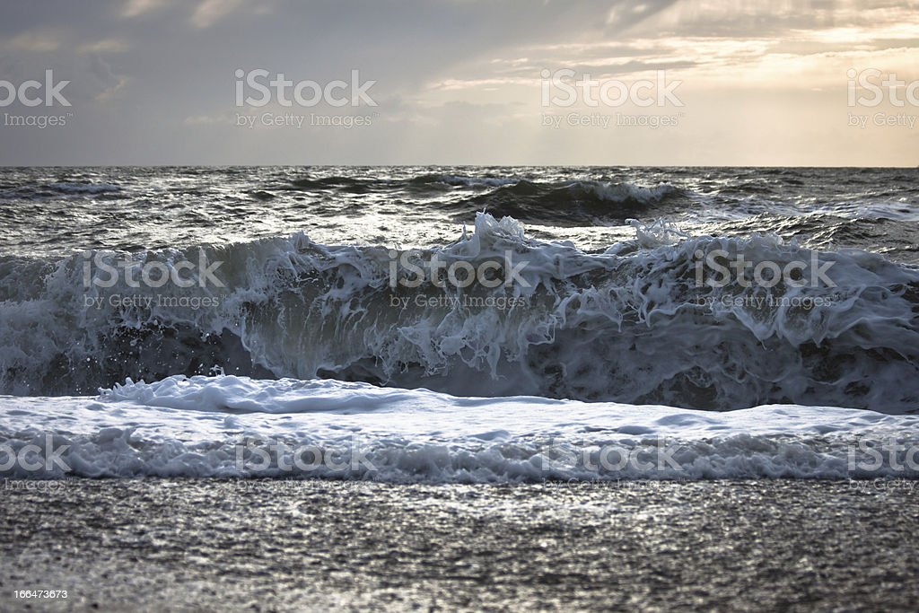 beach in danmark royalty-free stock photo