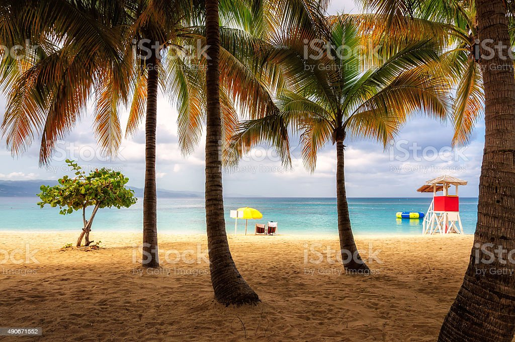 Beach in Jamaica with tall palm tree on Caribbean sea stock photo