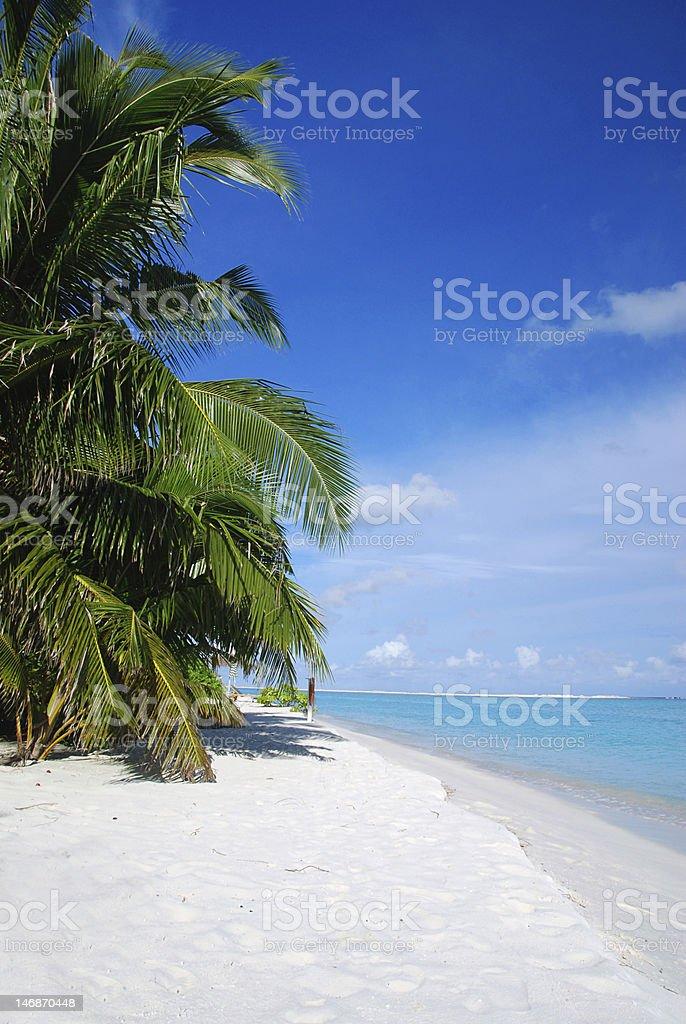 Beach in Maldives royalty-free stock photo