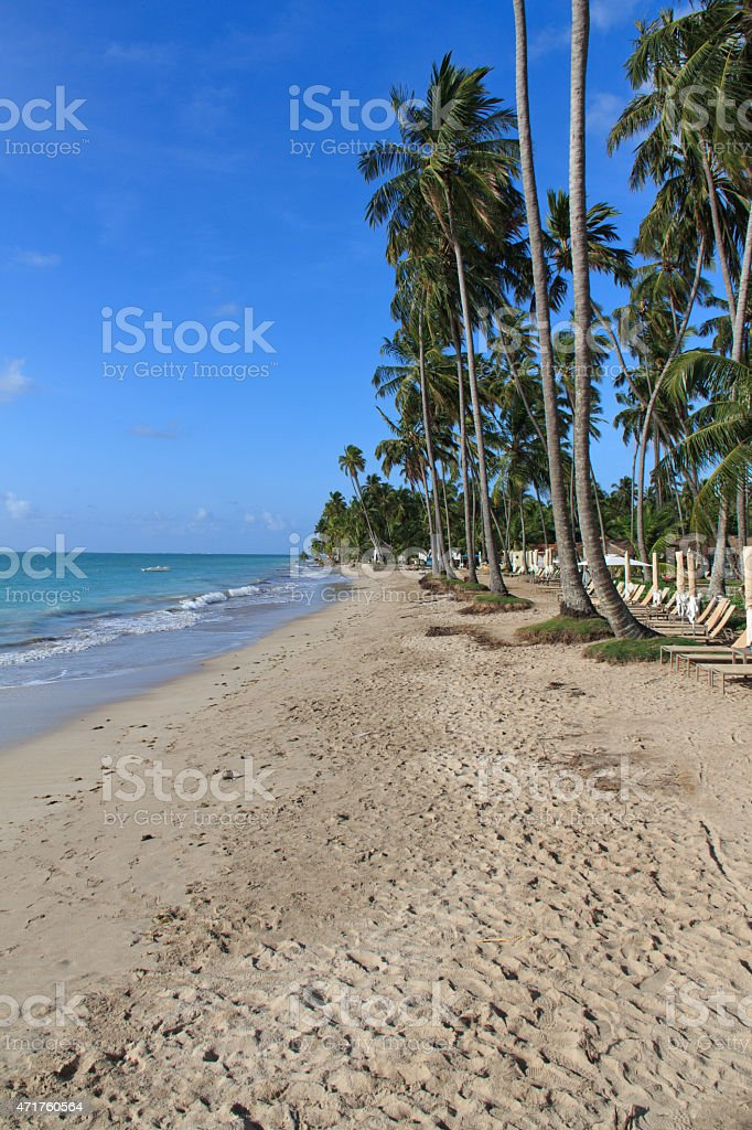 Beach in Maragogi, Alagoas - Brazil stock photo