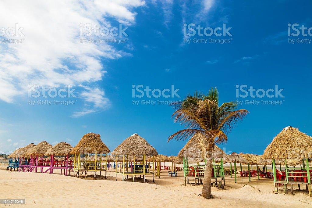 Beach in Marajo Island, north of Brazil stock photo
