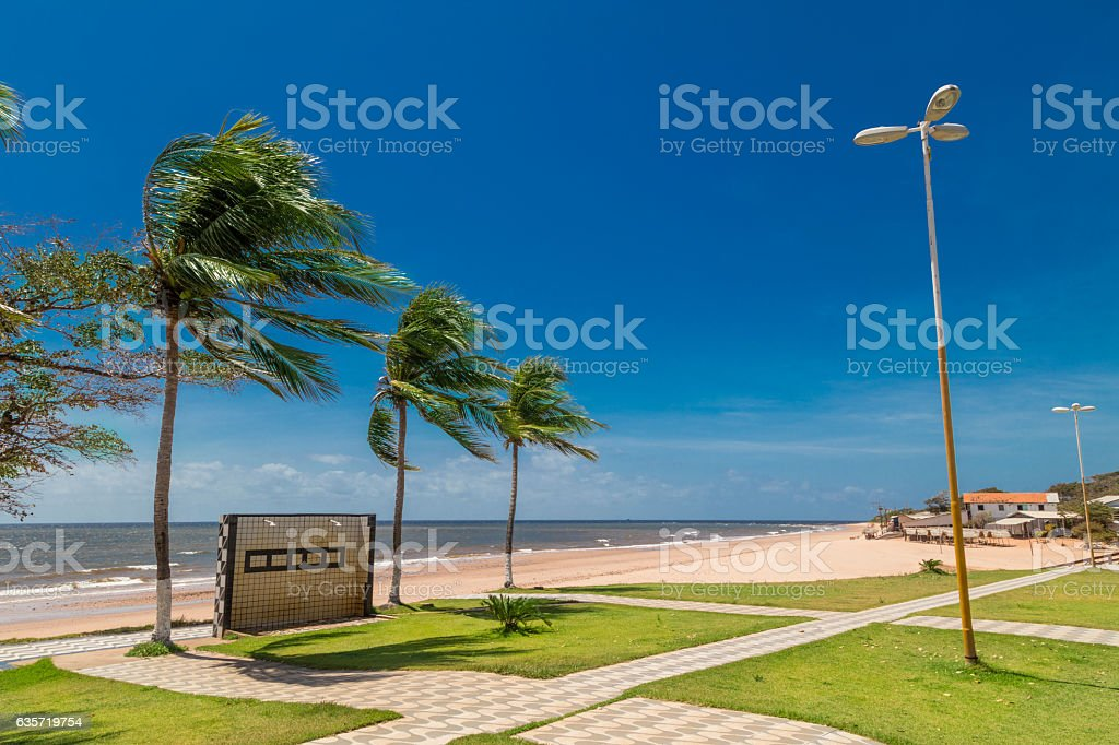 Beach in Marajo Island, north of Brazil stock photo