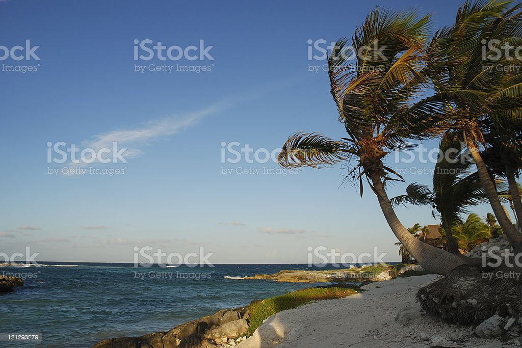 Beach in Mexico royalty-free stock photo