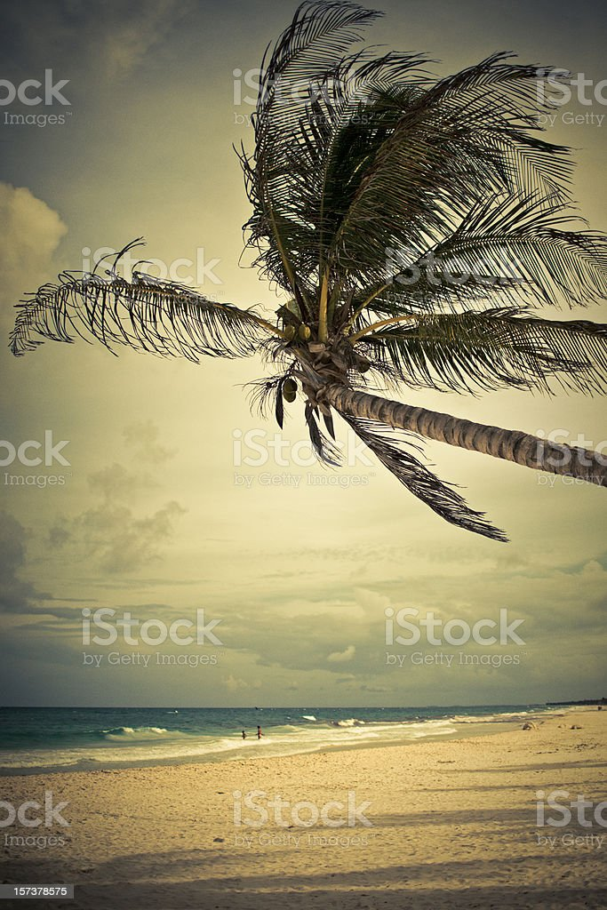 beach in mexico stock photo