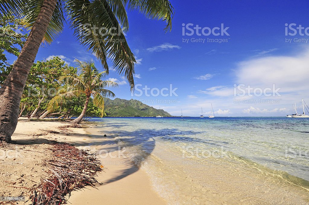 Beach in Moorea, Tahiti, royalty-free stock photo
