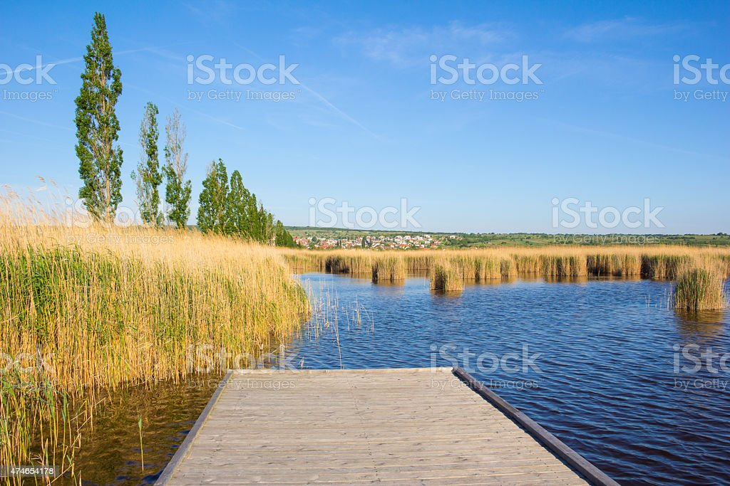 Beach In M?rbisch At Lake Neusiedl In Austria stock photo