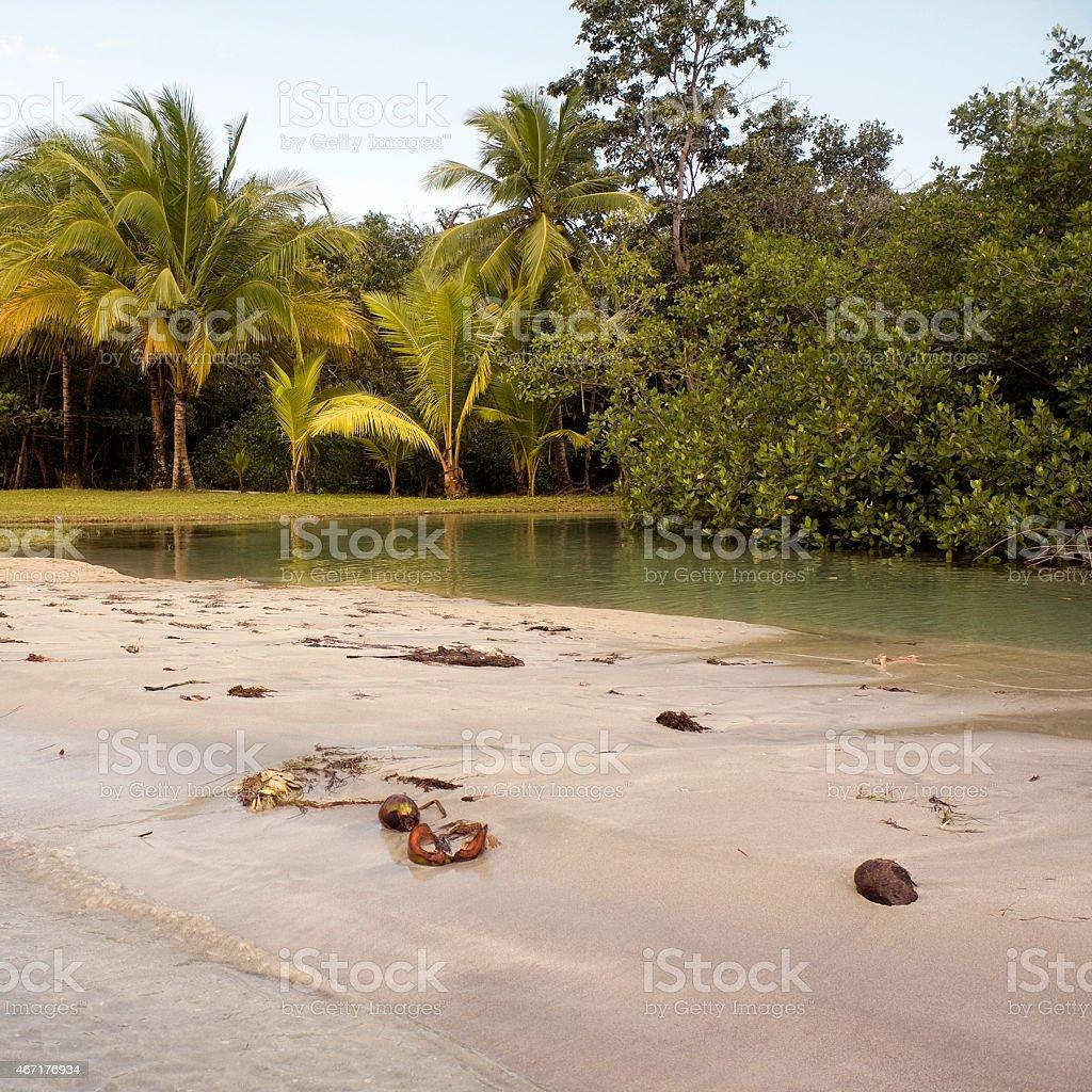 Beach in Panam?. Bocas del Drago stock photo