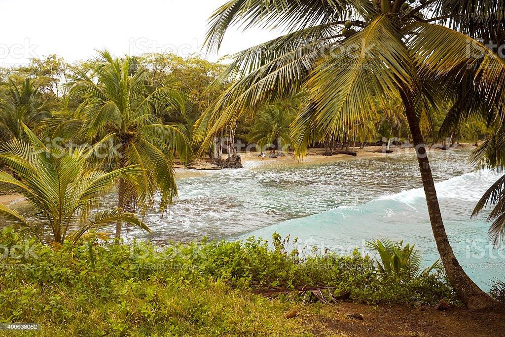 Beach in Panam?. Carenero Island. stock photo