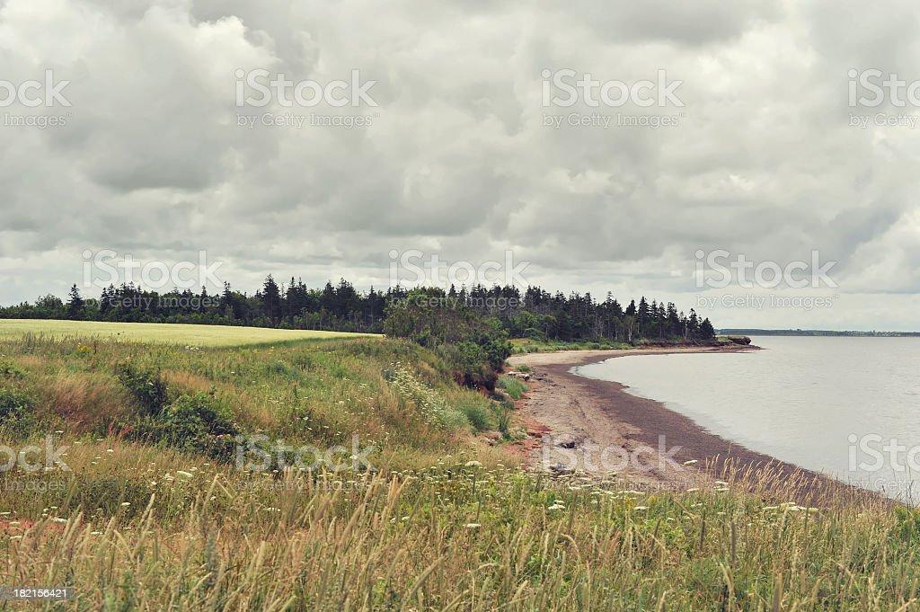 Beach in PEI stock photo