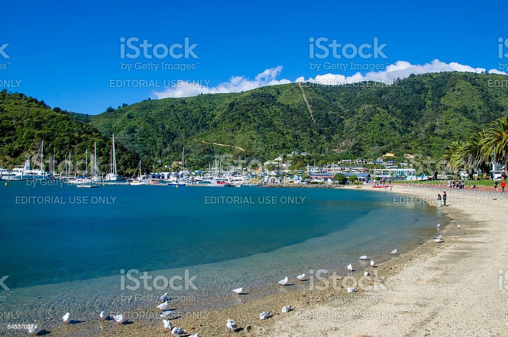 Beach in Picton,south island of New Zealand. stock photo