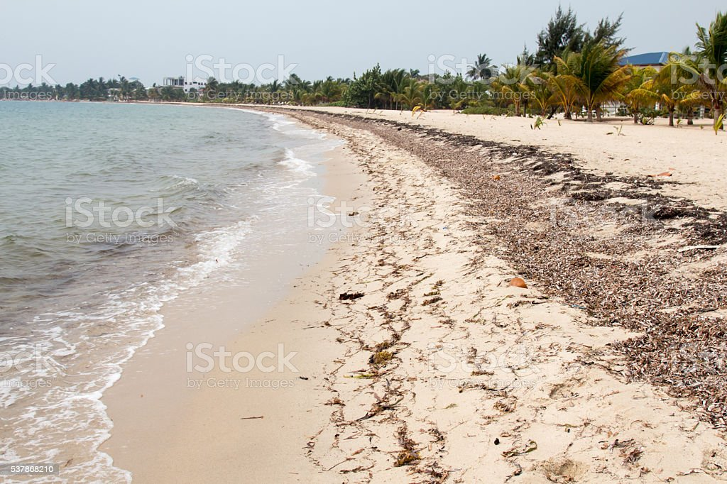 Beach in Placencia, Belize stock photo