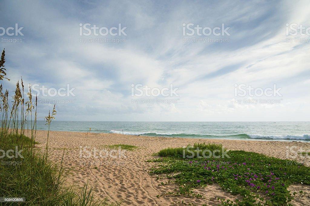 Beach in Sebastian Florida stock photo