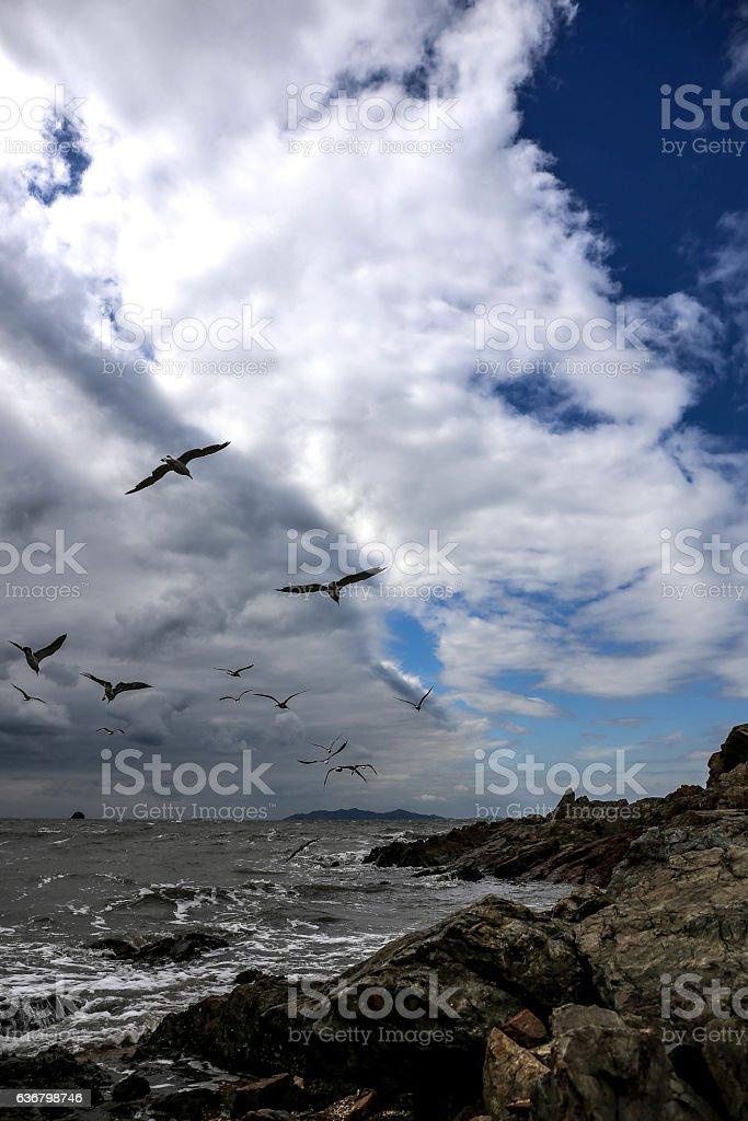 beach in spring : west sea,Korea stock photo