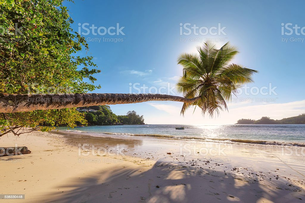 Beach in sunset time on Mahe island in Seychelles. stock photo